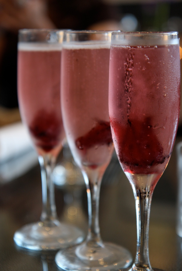 Hibiscus champagne
