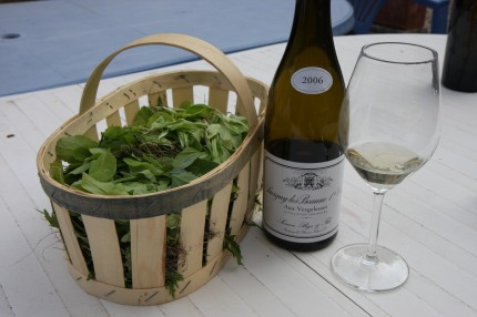 Fresh garden greens with Bize wine